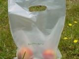 Shoping_Bag_made_of_PLA-Blend_Bio-Flex